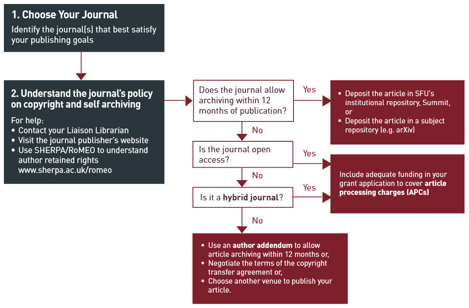Publishing considerations flow chart - see outline after image