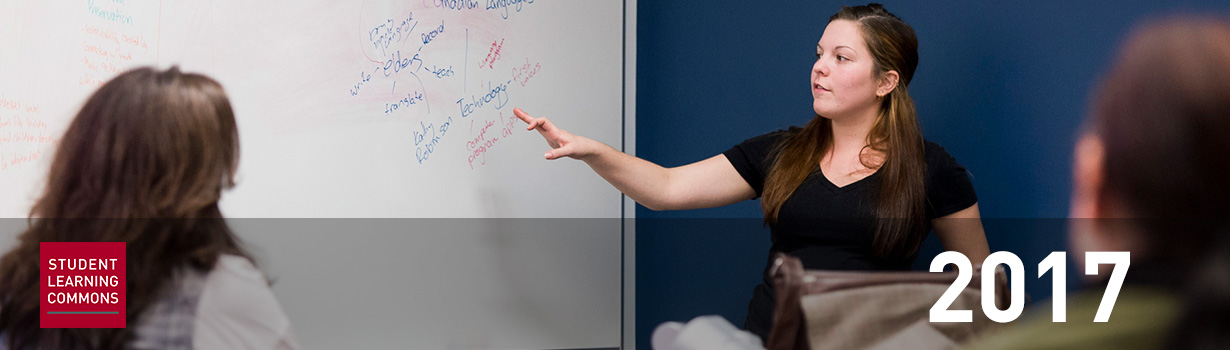 Student Learning Commons 2017: image of an instructor in front of a whiteboard