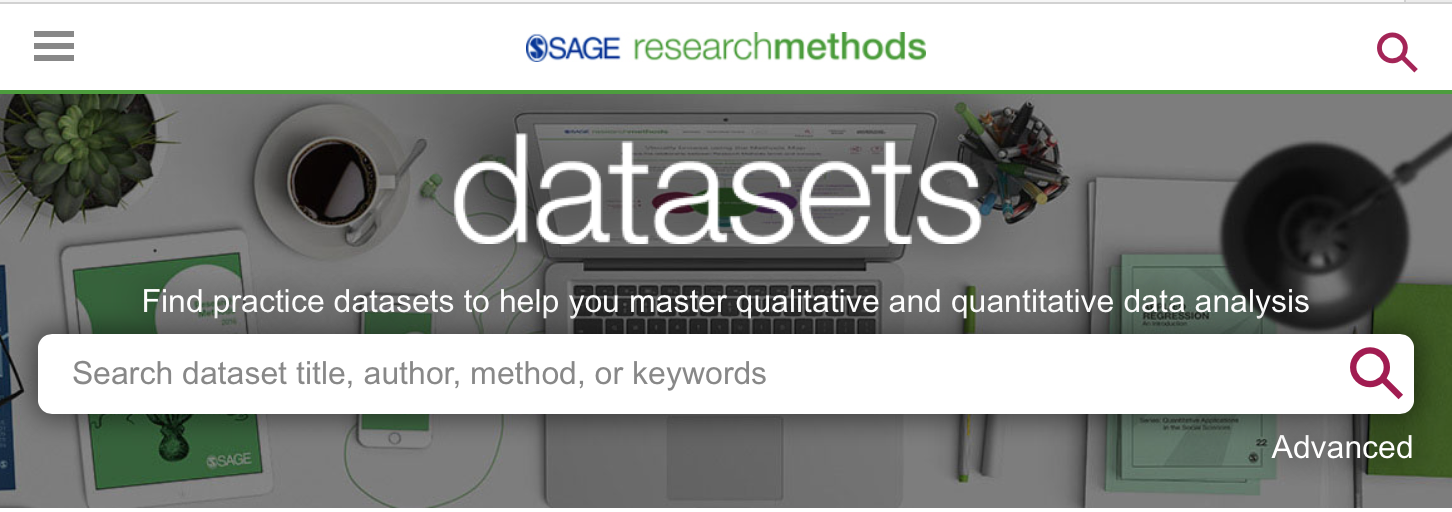 Screen capture fro within Sage Research Methods Datasets showing the main search box.